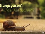 "Screenshot Youtube-Video, ""Gedanken einer Schnecke"" - kurze Version"